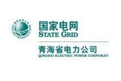 国家电网青海省电力公司